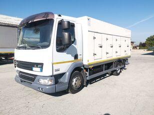 tovornjak hladilnik DAF 45.220 SURGELATI ATP 10/2024 - 120QLI
